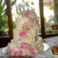 Kiana Lodge Wedding Cake