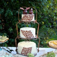 Leavenworth Wedding Cake