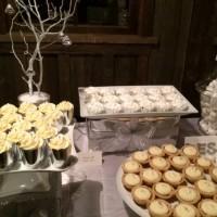 Winter Wonderland Wedding at Kelley Farm – 4